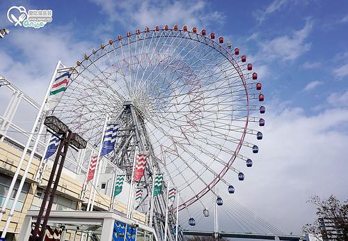 關西五天四夜:大阪海遊館、大阪3D燈光秀、手塚治虫博物館、寶塚歌劇、奈良東大寺、奈良鹿公園
