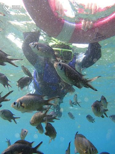 小琉球民宿.輪廓莊園,峇里島風格渡假民宿(潮間帶夜遊、浮潛看到綠蠵龜!)