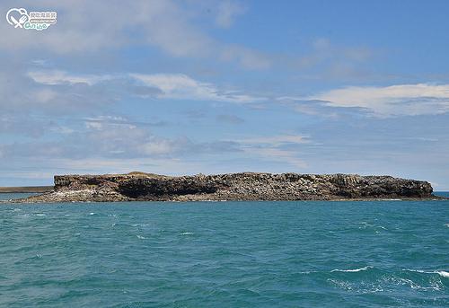 澎湖北海秘境漂流 Day2:船釣石鮔(小章魚)、無人島姑婆嶼、跳水浮潛