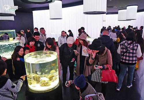 大阪.日本最大級、大型複合施設 EXPOCITY 新開幕,另有NIFREL水族館+動物園,超多動物超咖哇伊!