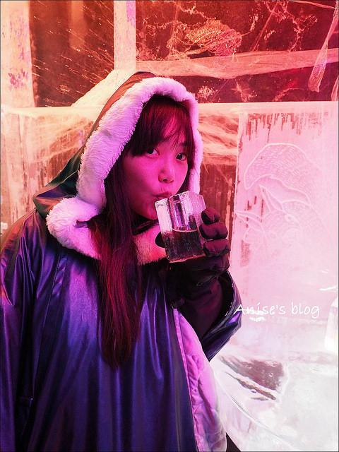 瑞典ICEBAR冰吧_027