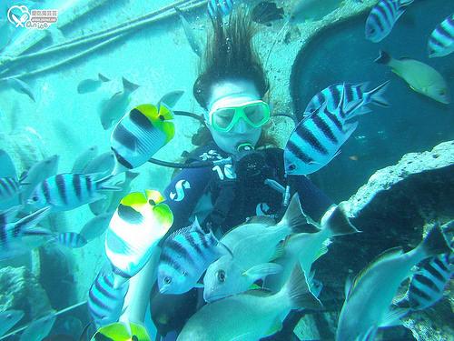 關島旅遊.JNS DIVERS GUAM,揹氣瓶潛水初體驗! @愛吃鬼芸芸
