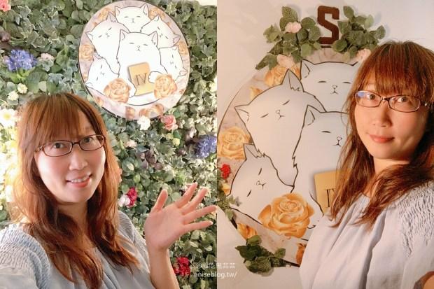 貓咪貓咪CATCAT 6S 台北東區桌遊旗艦店,包吃包玩交通方便,好友相聚的好地方!(跌倒阿姨食記)