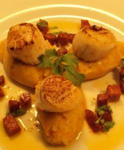 Sear Scallops and Braised Chorizo