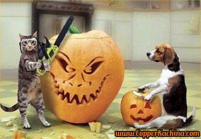 cat-dog-carving-pumpkin
