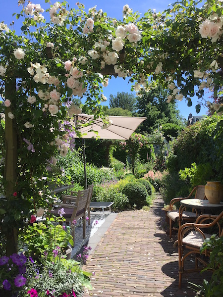 dagdroom-tuin-overzicht