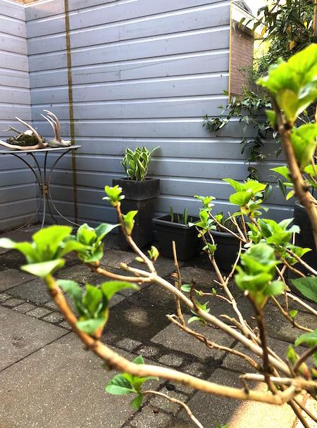 weer voor de tuin 4