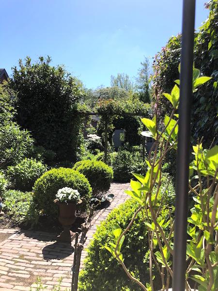 achtertuin groen