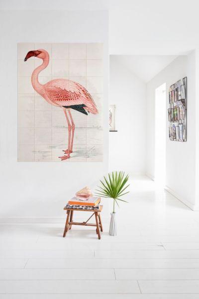 159010_IXXI_NHM_Flamingo_Davies