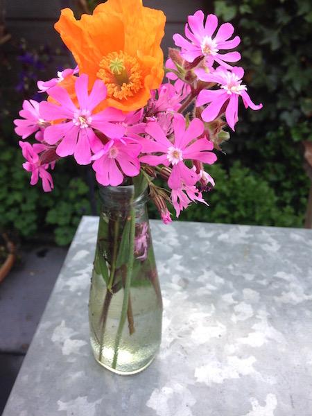 stylingregels- ornaje-roze