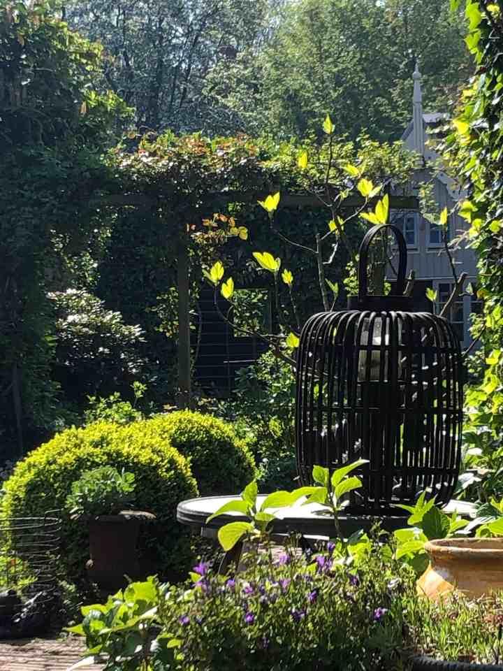 zwarte -schutting-green-garden