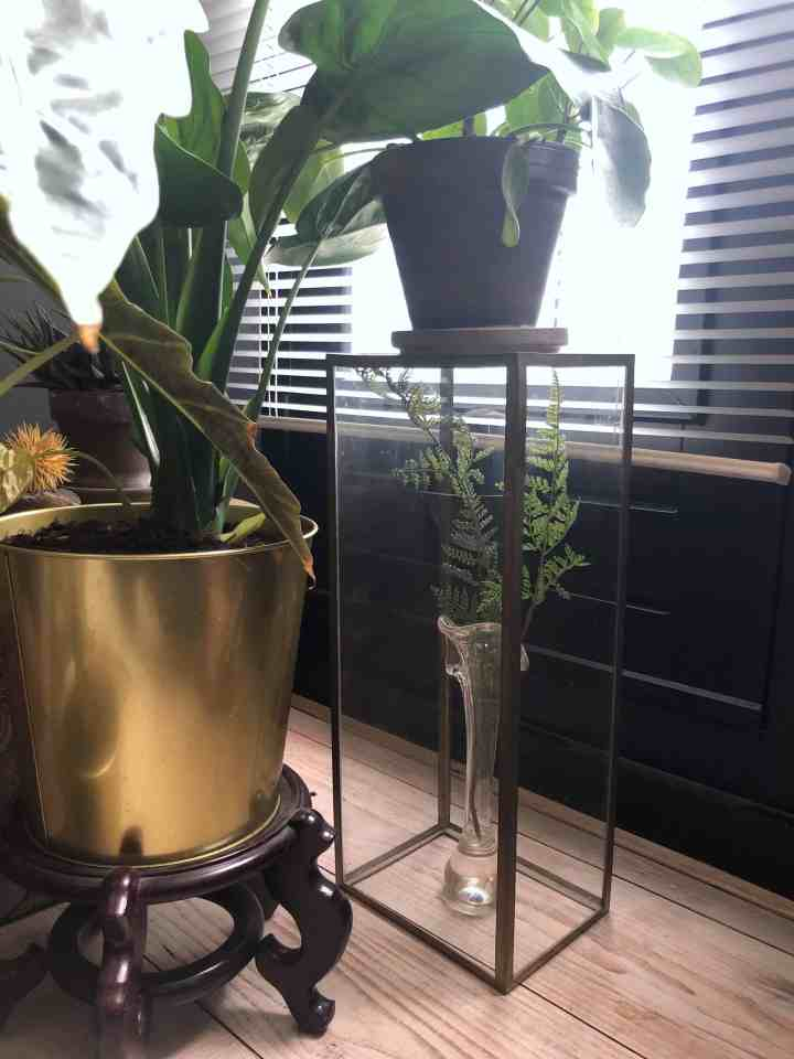 mix van fake planten & echte planten