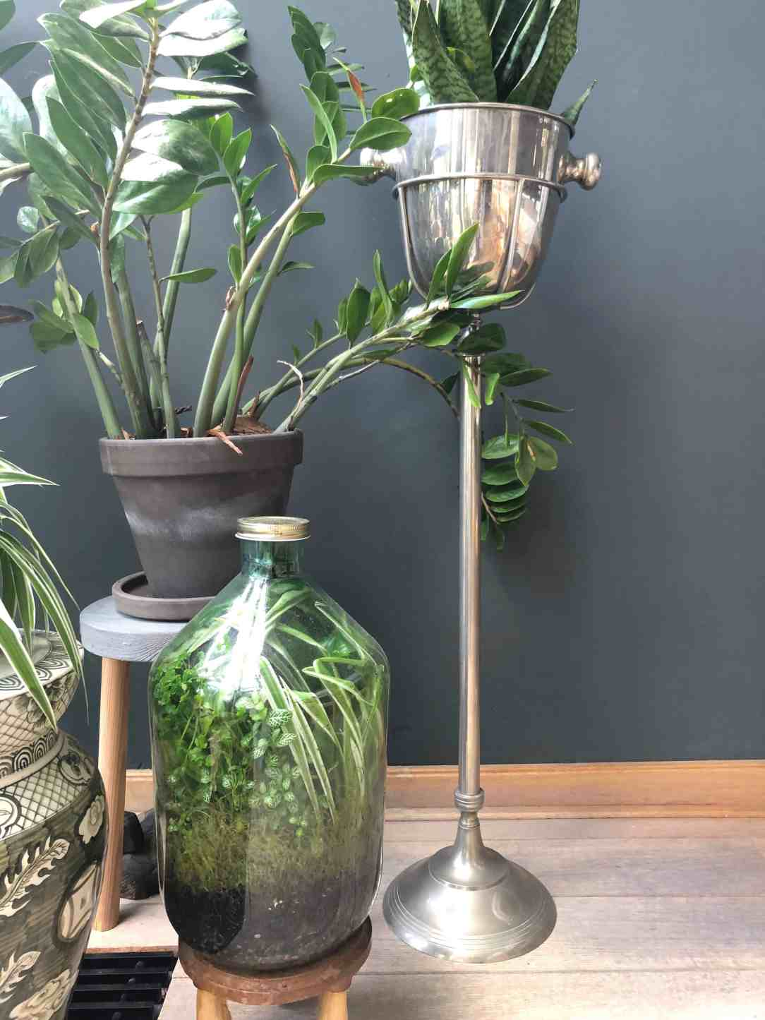 anitahomeblog- bottlegarden