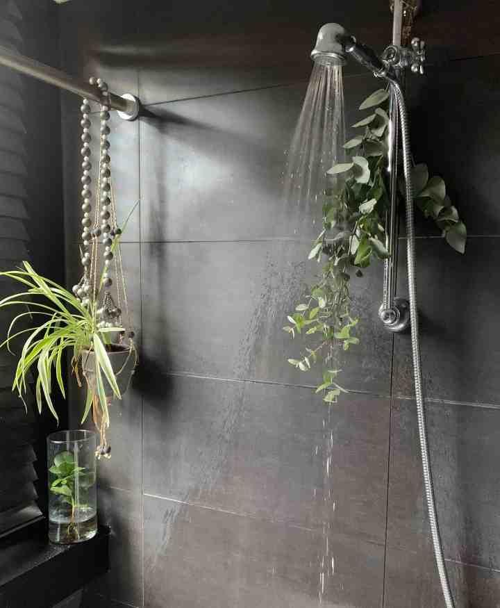 Haal herfst in huis-eucalyptus in badkamer