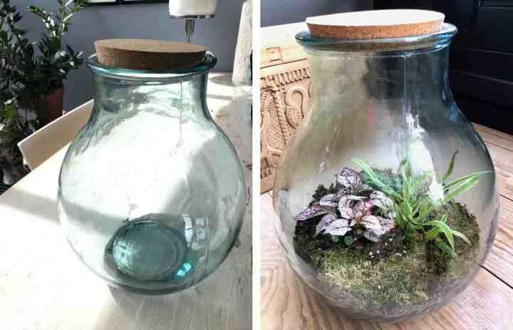 gesloten fles met planten