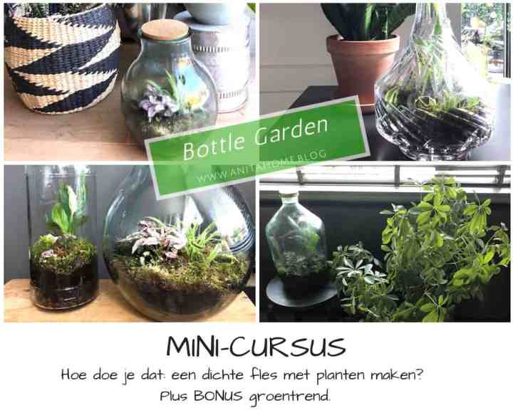 cover mini-cursus(1)