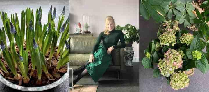 Haal de lente in huis: 4 super makkelijke tips