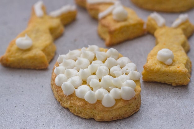 up close shortbread cookie