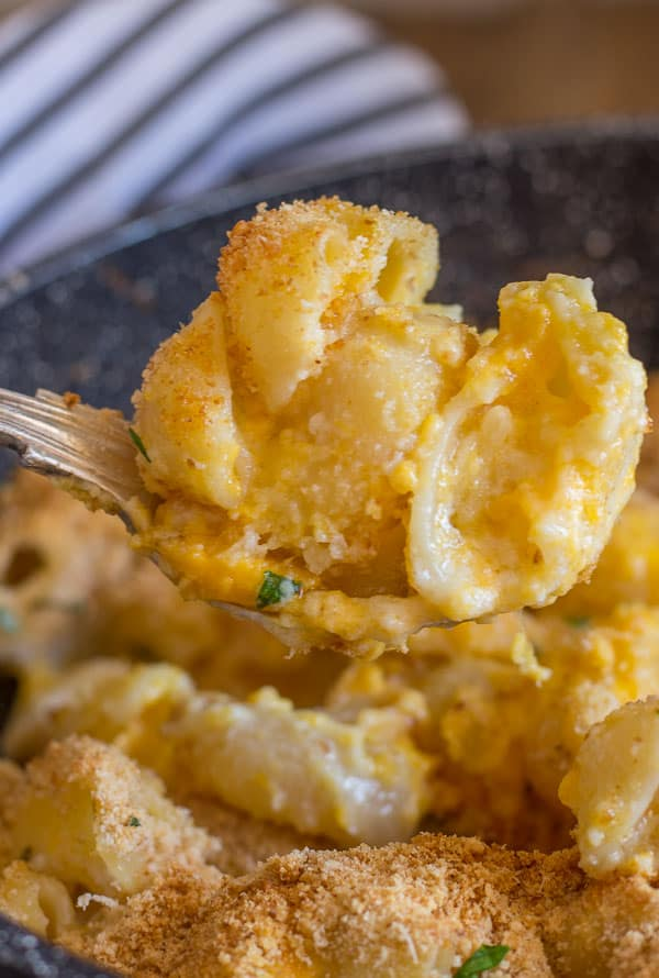 upclose spoonful of baked macaroni double cheese