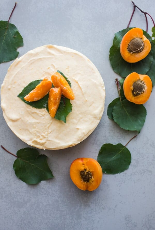 Fresh Apricot Double Layer Cream Dessert, an easy fresh apricot dessert recipe, a healthy refreshing summer treat.
