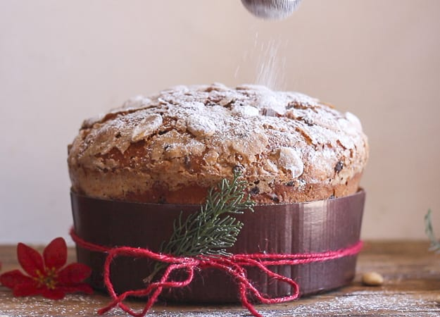 front view of Panettone sprinkling with some icing sugar