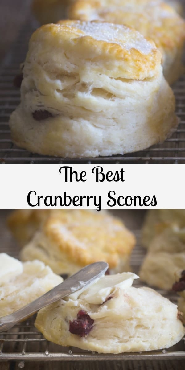 These Cranberry Scones are quick and easy, just a bowl and a fork is all you need. The perfect scone recipe you won't be looking anywhere else for a recipe.#scones #cranberryscones #breakfast #dessert #biscuits