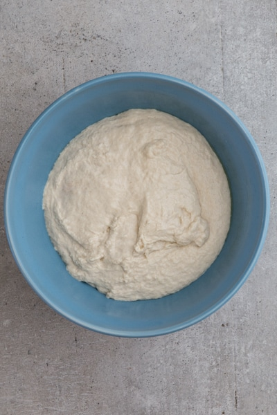 the dough in a blue bowl before rising