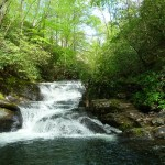 "Living in the ""Flow"" of God's River"