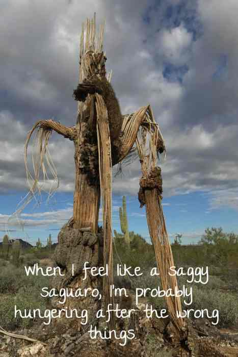 When life feels like a desert, maybe it's time to evaluate what you hunger. http://wp.me/p7W1vk-8G via @blestbutstrest