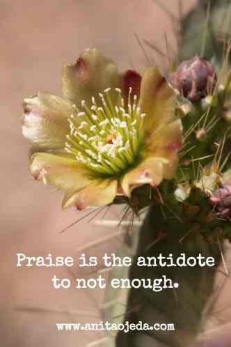 Praise is the antidote to not enough. http://wp.me/p7W1vk-cG via @blestbutstrest