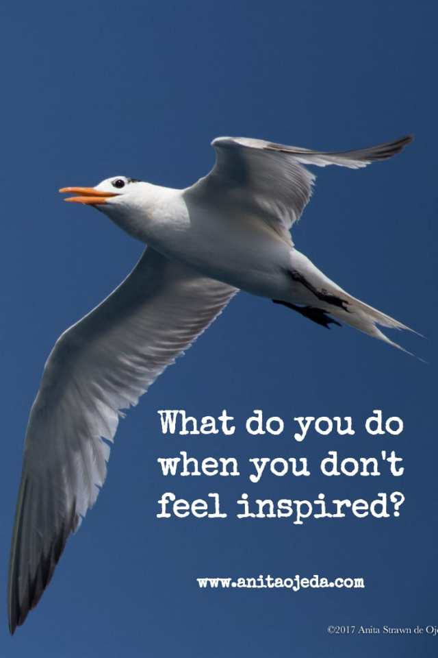 What do you do when you don't feel inspired? http://wp.me/p7W1vk-gD