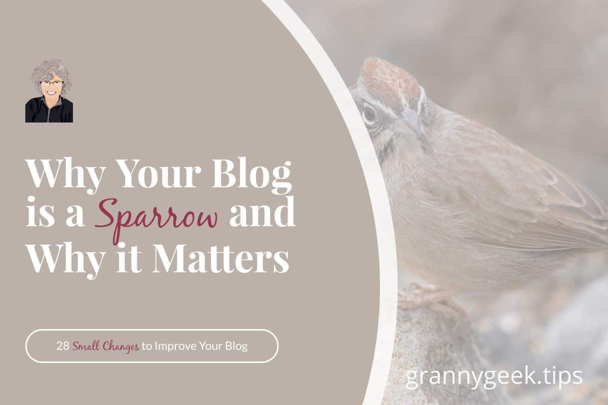 You can find a sparrow just about anywhere, and they often look rather ordinary and plain. But they matter. Find out how your blog is a sparrow and why it matters, too. #sparrow #birding #blogging #write28days #blogger #encouragement