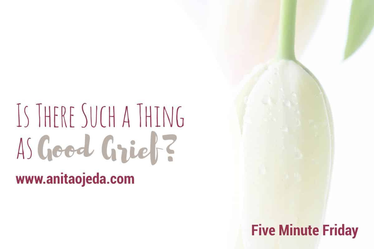 Good grief? Is that even a thing? I found out the hard way that grief is a natural, human response to pain. Learn to sit with your grief. #grief #anxiety #depression #NationalFamilyCaregiversMonth #caregiver #fmfparty #emotions #health #mentalhealth