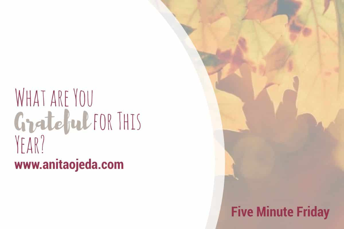 Can you be grateful even in the hard times? Share your best six-word sentence that encapsulates your gratitude for the year. #gratitude #grateful #attitude #choice #fmfparty #hardtimes #difficultyear #thanksgiving