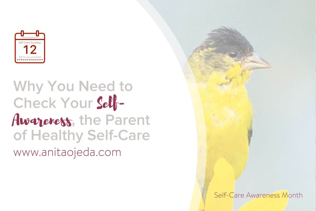 How self-aware are you? I recently discovered that my self-awareness wasn't all the great. Check out these five self-care hacks to help you develop your self-awareness. #SelfCareAwarenessMonth #SelfCareMonth #SelfCareSunday #selfcare #career #goals #growthmindset #healthyliving #mentalhealth