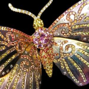 Graceful Wings