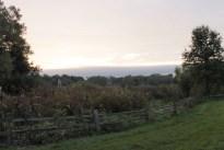 sunrise_garden