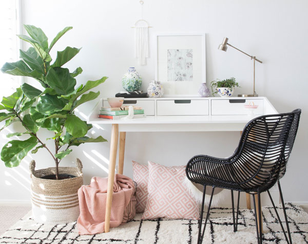 Cute and relaxed workspace with fiddle leaf fig