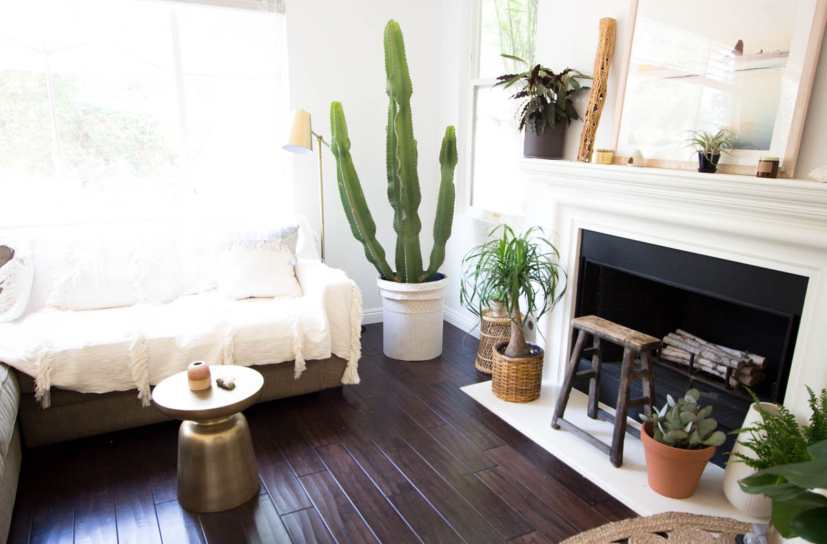 white walls desert decor large cactus west elm brass side table