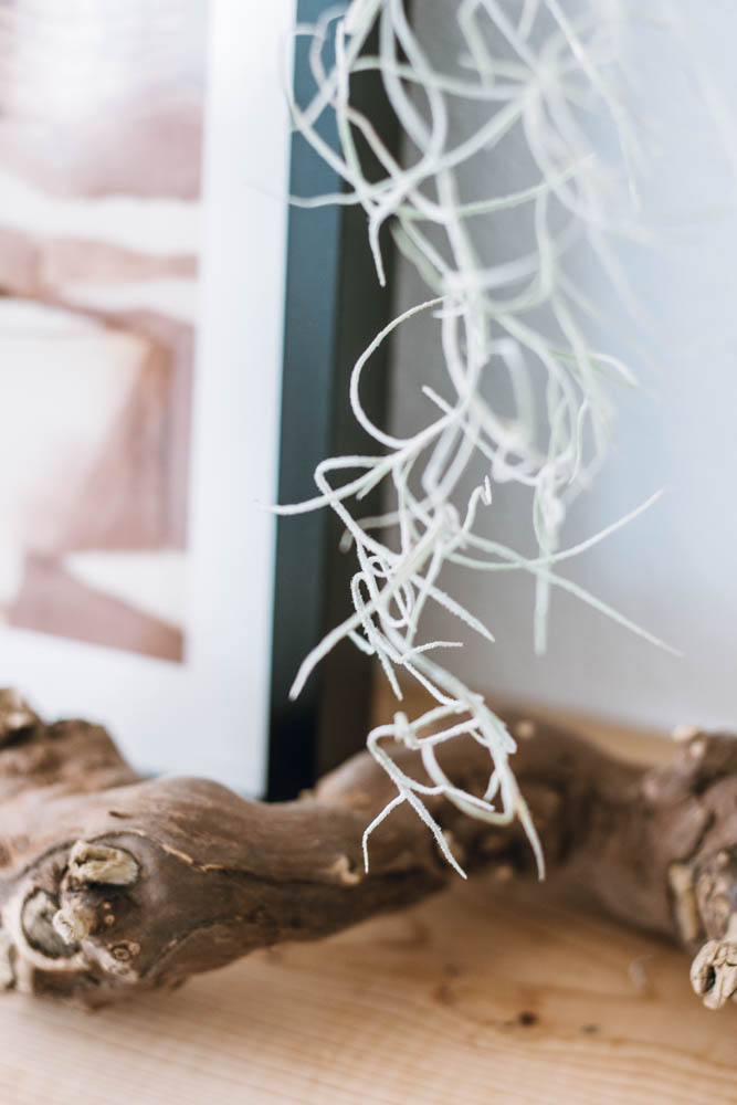 spanish moss driftwood art print