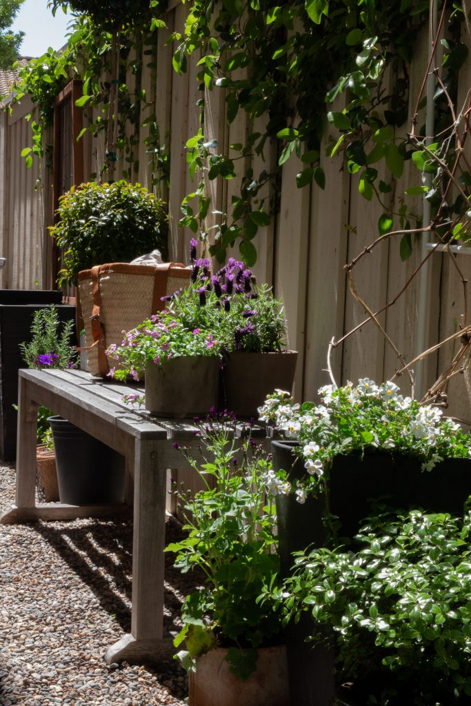 secret garden side yard DIY bench