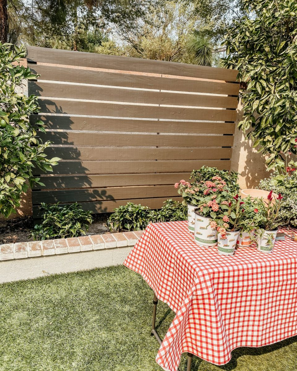 The painted midcentury modern fence, with plants on a table in front with a gingham tablecloth
