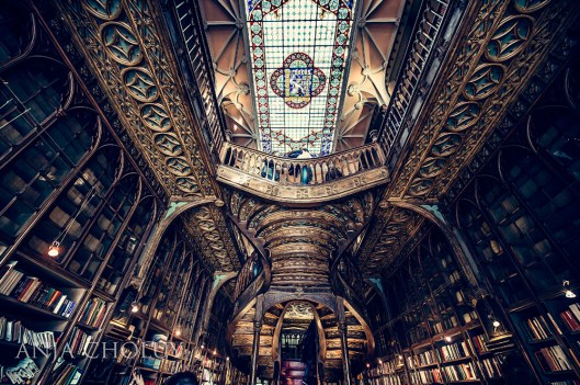 porto libary old style portugal anja choluy travel good wine