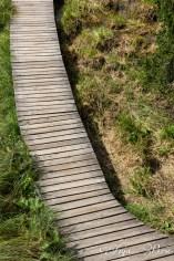 Path below