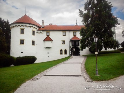 Front side of Bogenšperk castle.