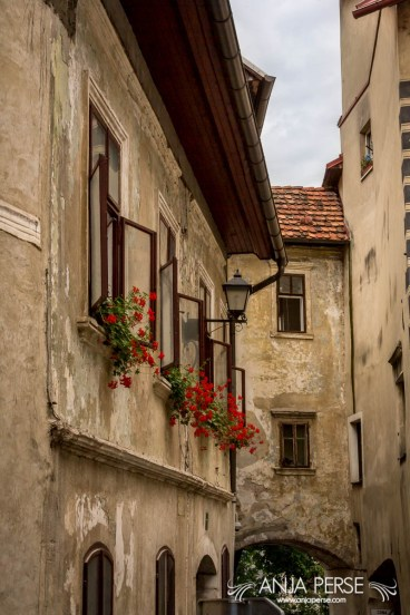 Old town buildings