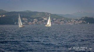 Regatta at Dugi Otok