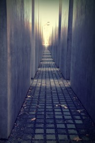 A path between the stelae
