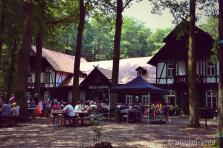 A rustical and old guesthouse with a beer garden in the midst of the forest.