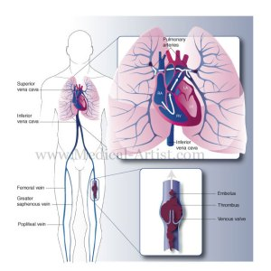 Sains Ting 3 ( Form 3 ) – PMR | Anjung Sains Makmal 3